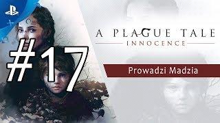 [PS4] A Plague Tale: Innocence #17 - Rozdział XIV - Więzy krwi cz.2