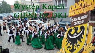 Dożynki Wojewódzkie Strzegom 2014   Występ Kapeli Gieni Dudki z Nadolic Wielkich gmina Czernica 1
