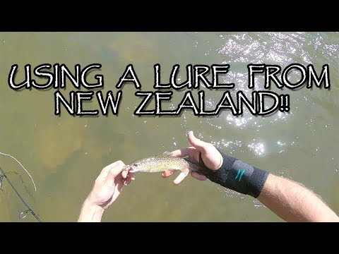 Trout Fishing With A Lure From NEW ZEALAND!!