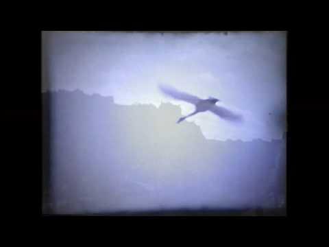 Jäät lähtee – Aino Elina (Official Music Video)