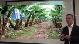 Integracion Multisectorial para Produccion Agricola Sustentable
