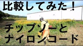 草刈り・同じ面積に生えたセイタカアワダチソウを、チップソーとナイロンコードで刈り取り、刈り取り時間と燃料消費量を比較してみた!果たして結果は?意外?順当?