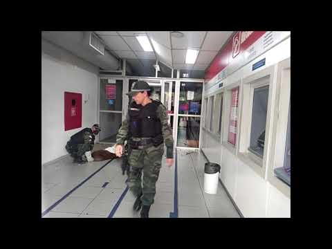 Capivara se esconde dentro de agência bancária e é resgatada pela Polícia Ambiental