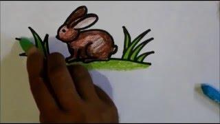how to draw a rabbit for kids tutorial video - cara menggambar kelinci untuk anak-anak atau pemula