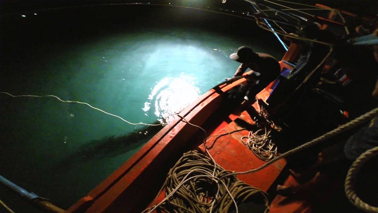 ночная ловля кальмара