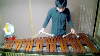 【超高速】千本桜をプロのマリンバ奏者が高速で演奏するとこうなった! 【マリンバ / Marimba】 thumbnail