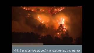 שריפות בצרפת