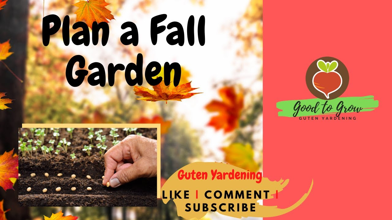 Time To Plan Your Fall Garden Vegetable Seeds Unboxing What To Plant In July 2020 Zone 5 Youtube