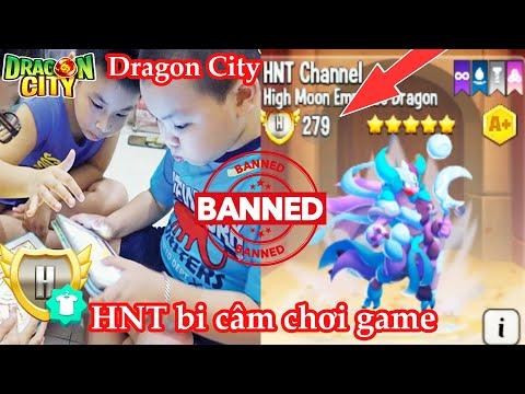 hack dragon city trên facebook mới nhất - HNT bị cấm chơi game Dragon City cùng anh em Việt Nam vì Hack Mod Apk quá mạnh HNT Channel