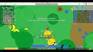 mope.io | Чит на создание своих животных (Cкины) как обещал