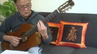 LỆ ĐÁ  --  Trần Trịnh -- Thơ Hà Huyền Chi