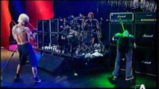 Red Hot Chili Peppers - Yertle Trilogy (Sashimi Studios) Part 1