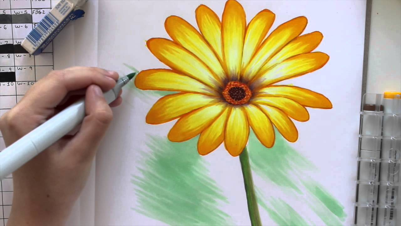 Coloring A Daisy Flower With Copic Markers
