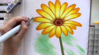 Coloring A Daisy flower (With Copic Markers)