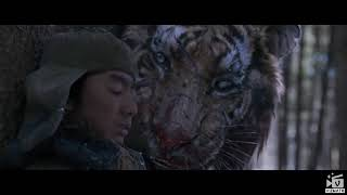 Tiger attack hunter...  The Royal bengal tiger attack scene