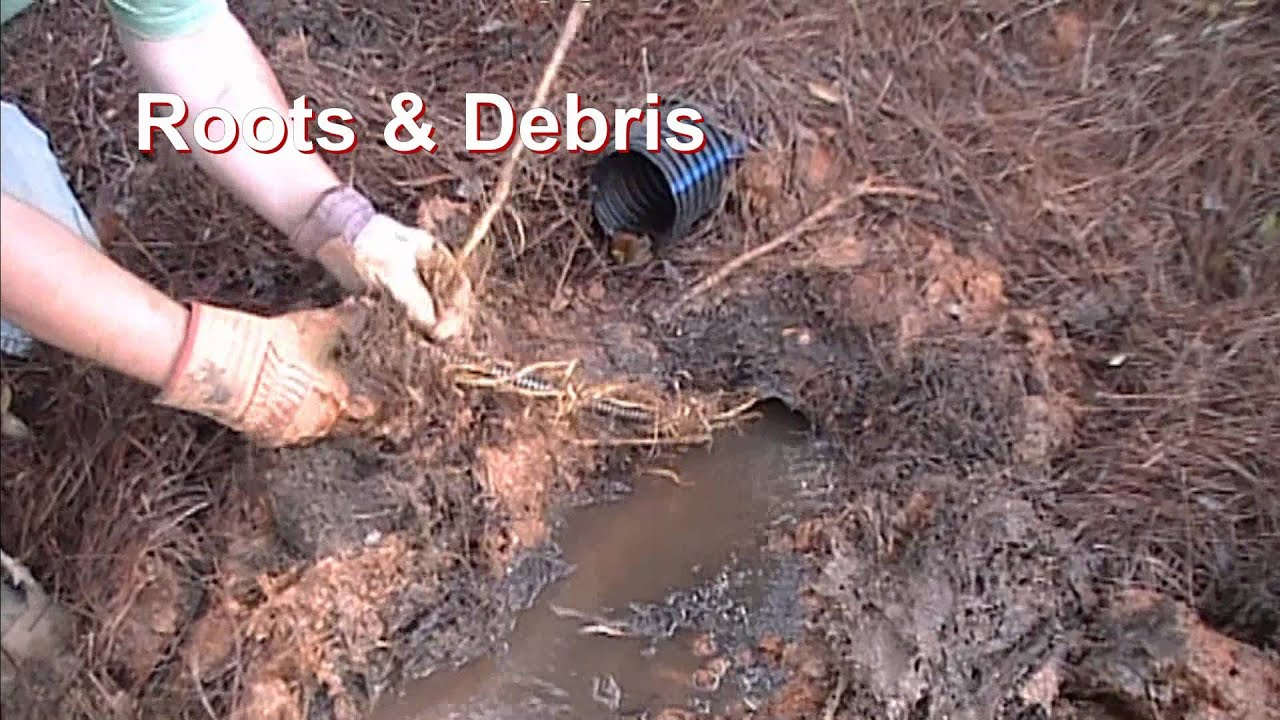 Drain Clean Out  Roots  Debris French Drain Downspout