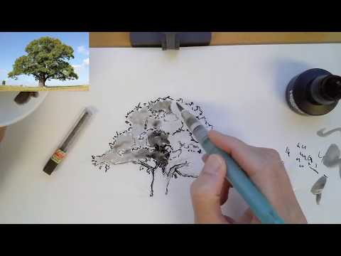 Sketching a tree in Pen & Ink from start to finish