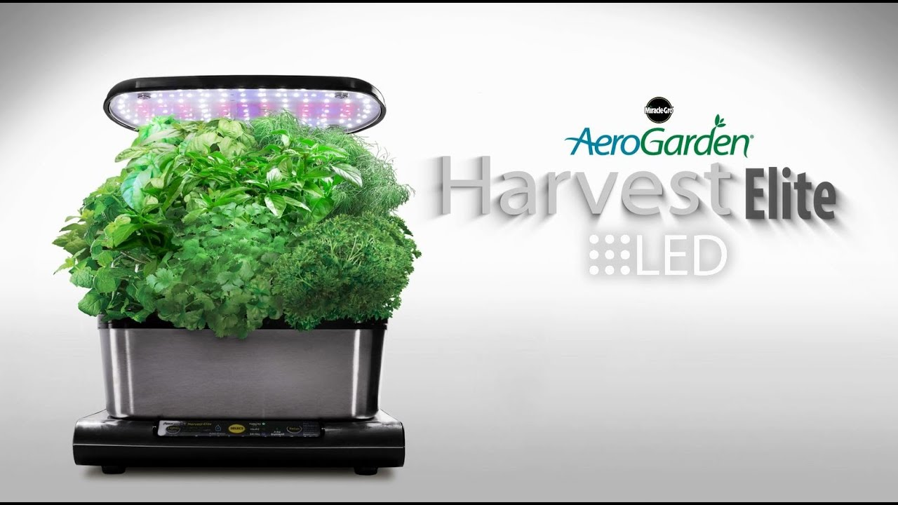 aerogarden harvest elite