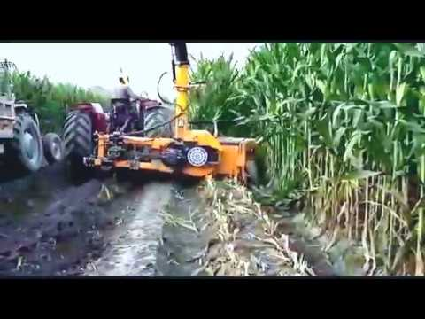 Silage making with Celikel Row Independent Maize Chopper at Nestle Sarsabz Farm