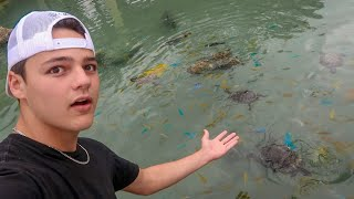 ULTRA CLEAR ABANDONED FISH POND!!!
