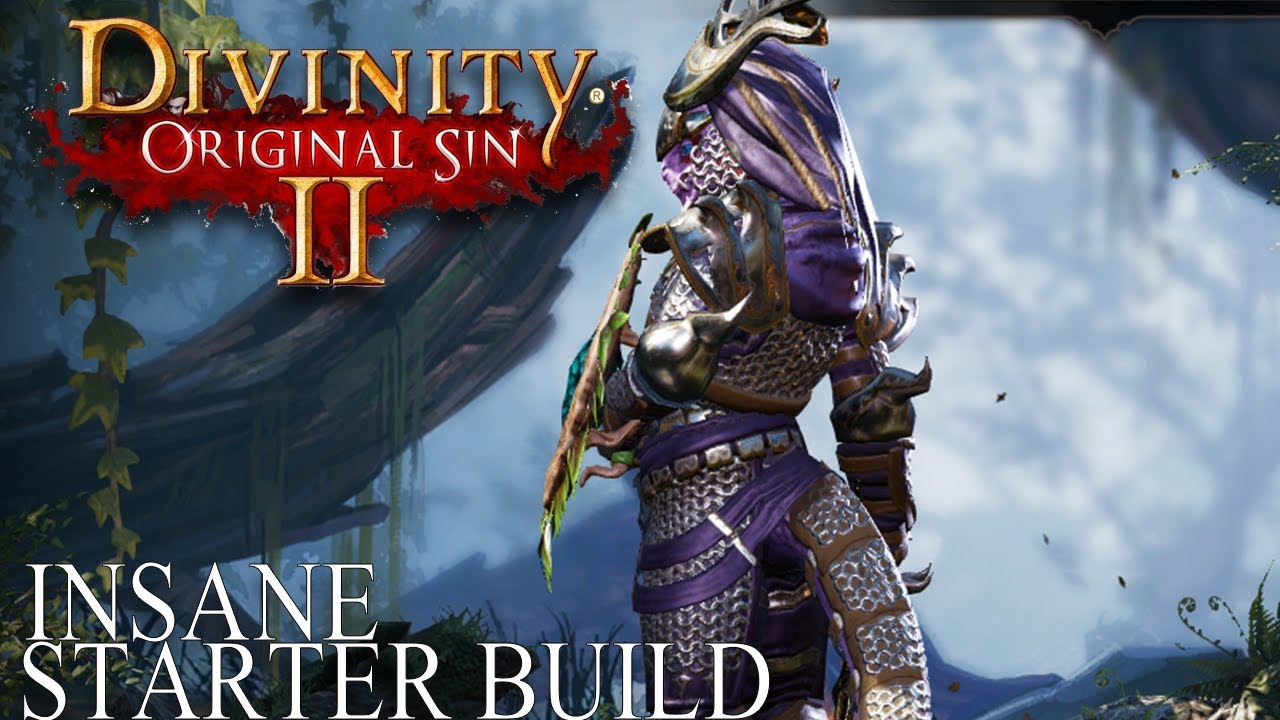 Insane Divinity Original Sin 2 Starter Build