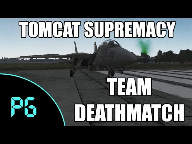 DCS - F14 - That Tomcat Life
