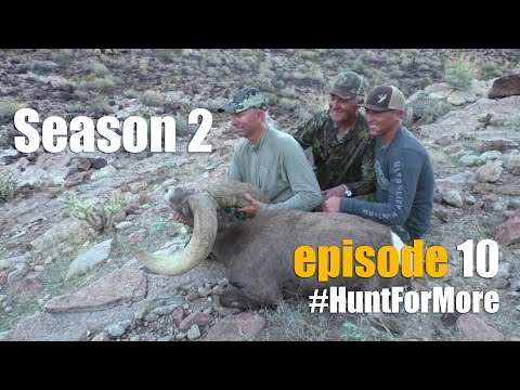2015 Raffle Desert Bighorn Sheep Hunt *Episode 10