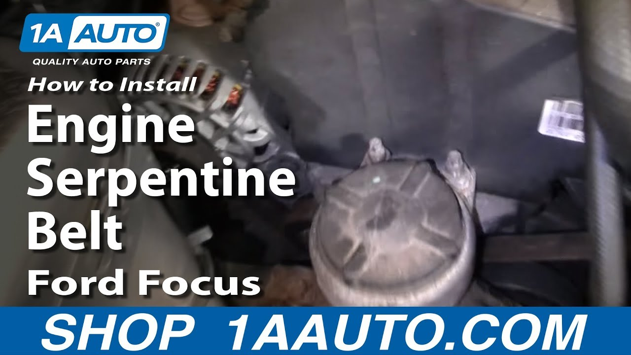 How To Install Replace Engine    Serpentine       Belt    Ford    Focus