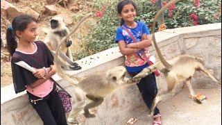 सुन्धा माता - full exclusive video , सुंधा माता भजन & Sundha Mata video songs 2017, Rajasthani song