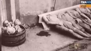 Виталий Чуркин попросил объяснить главе МИД Польши, кто освобождал Освенцим  21 01 2015
