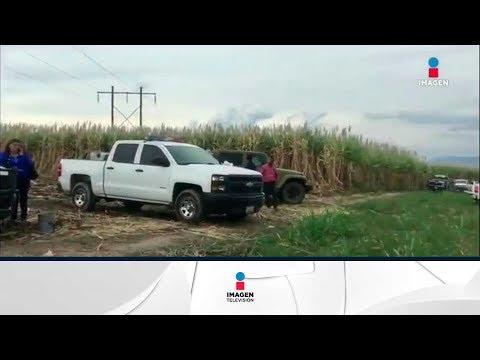 Encuentran ocho cuerpos en una fosa clandestina en Nayarit | Noticias con Ciro Gómez Leyva