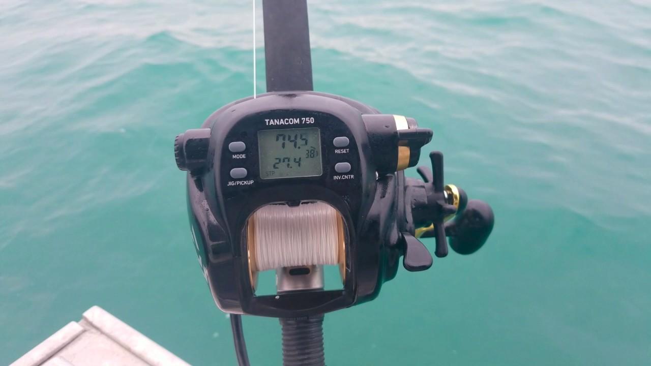 e382736d7b8 Halibut fishing with a Daiwa Tanacom 750 Electric Reel. - YouTube