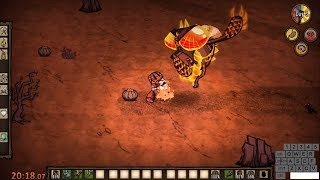 DST Enraged Dragonfly Solo Speedrun Kill on Day 3 in 22:00 - no cheese - Don't Starve Together