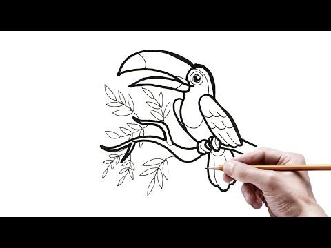 Menggambar Ragam Hias Fauna Burung Tukan Toucan Mudah Youtube