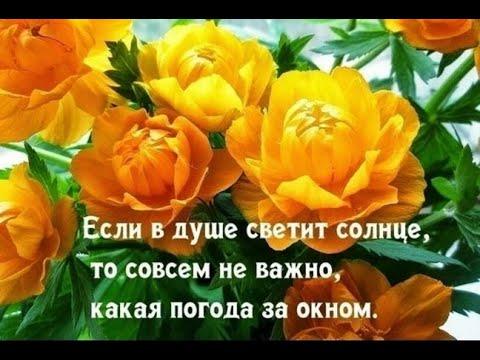 Желаю Счастья Любви!!!