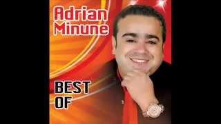 Adrian Minune - In viata mea (Audio oficial)