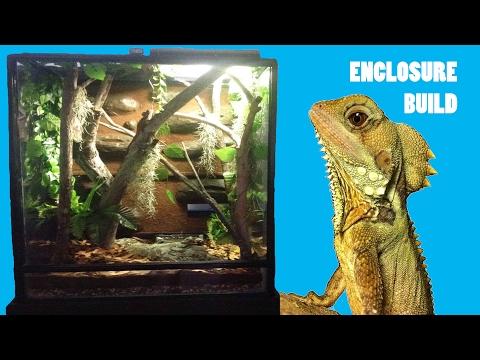 Building A GIANT Rainforest Reptile Enclosure!