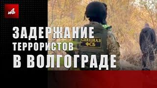 Задержание террористов в Волгограде
