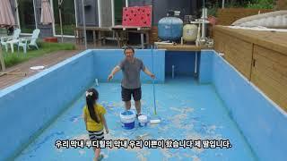 루디힐 치와와 전문견사 - 전원주택 수영장 정비 2번째…