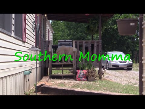 """""""Southern Momma An Summer Chores!"""" #DarrenKnight #Comedy #Funny #Comedian #LOL #StandUpComedy"""