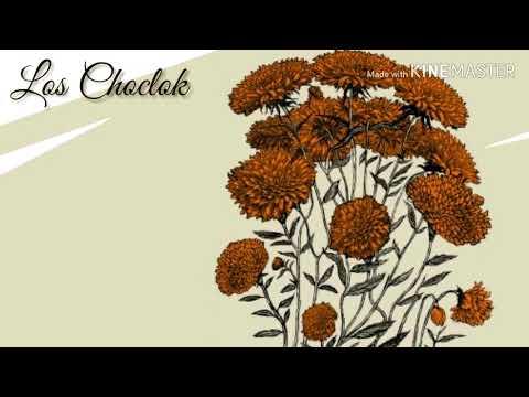 Los Choclok - Cempasúchil [Letra] (Versión Acústica) (2019)