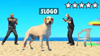Playing GTA 5 RP As A DOG!