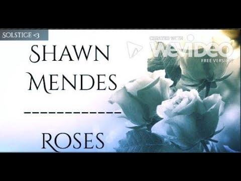 Shawn Mendes~Roses (Lyrics)