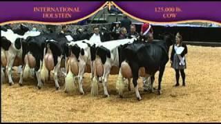 Holstein 125,000 Lb