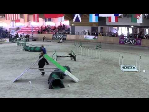 Kerry Blue Terrier in WAO 2015 Biathlon Championships