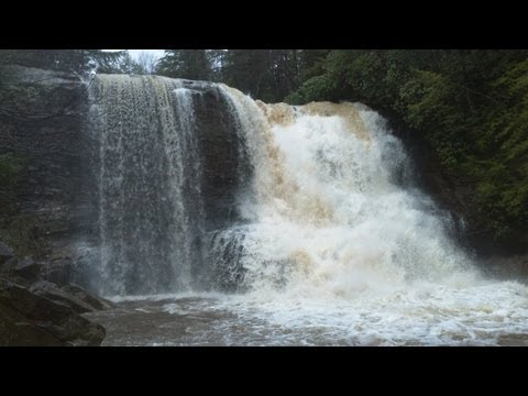 Highest Waterfall in Maryland at Swallow Falls State Park [CeleGREAT OUTDOORS]