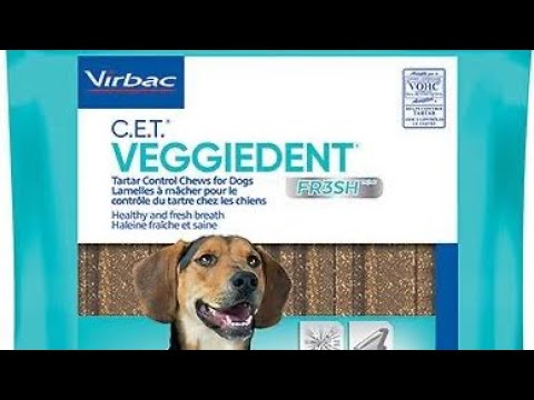 Dog Bad Breath Remedy - Virbac Veggiedent