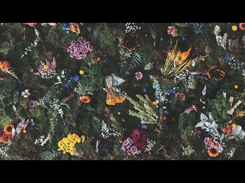 Winterbourne - Better (Official Audio) Mp3