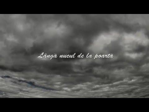 Pasha Parfeni - Acasa (Official lyrics video)