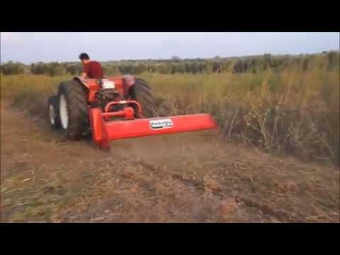 Dal Sap Parçalama Makinasi Ile Arazi Temizliği